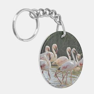 Flamingo Bird Office Home School Destiny Destiny'S Keychain