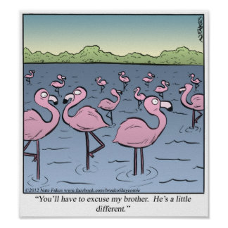Flamingo Brother Poster