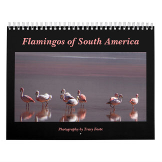 Flamingo Calendar 2018 - South America Birds