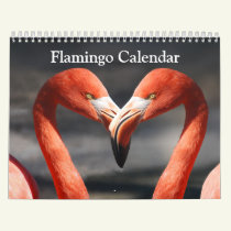 Flamingo Calendar 2019