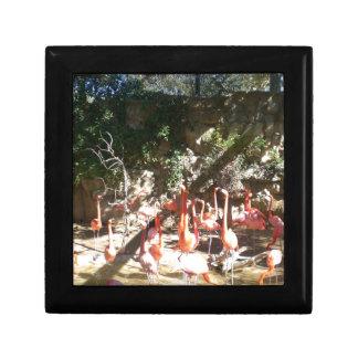 Flamingo Clan Keepsake Box