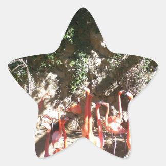 Flamingo Clan Star Sticker