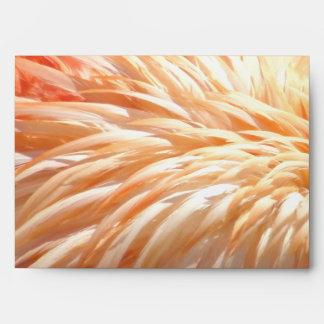 Flamingo feathers_ envelope