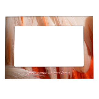 Flamingo Feathers Magnetic Frame