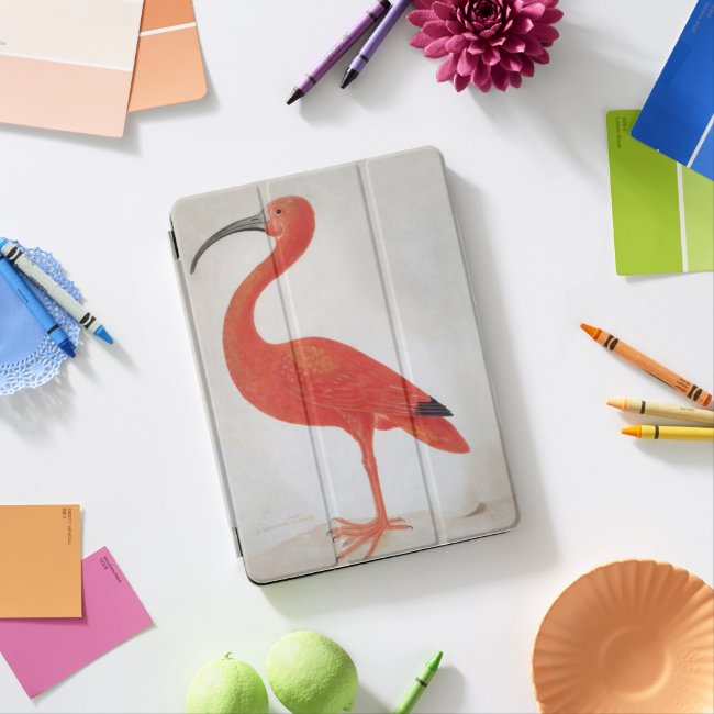 Flamingo - Fine Art ipad Cover
