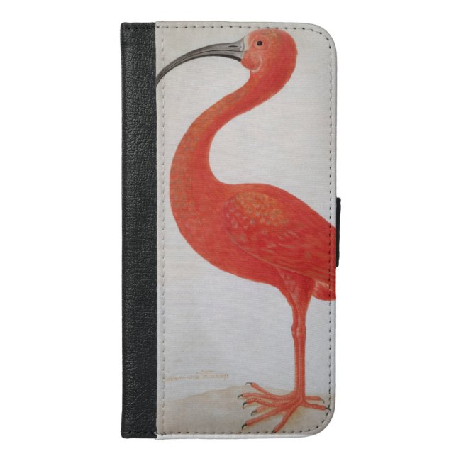 Flamingo - Fine Art iPhone Wallet Case
