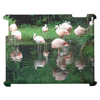 Flamingo Flamboyance iPad Covers