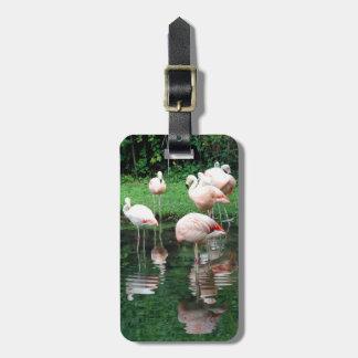 Flamingo Flamboyance Personalized Bag Tag
