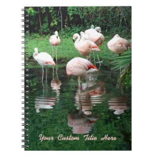 Flamingo Flamboyance Spiral Notebook