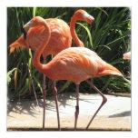 "Flamingo Flock Invitation 5.25"" Square Invitation Card"