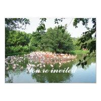 flamingo flock invitation