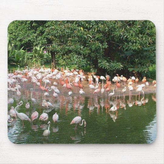 flamingo flock mouse pad
