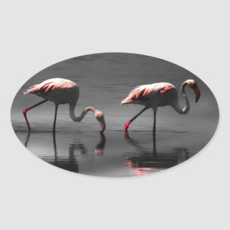 Flamingo Glow Oval Sticker