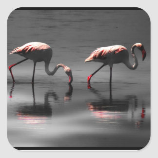 Flamingo Glow Square Sticker