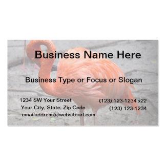 flamingo head curved against sand bird business card