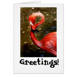 Flamingo head curved down greeting card