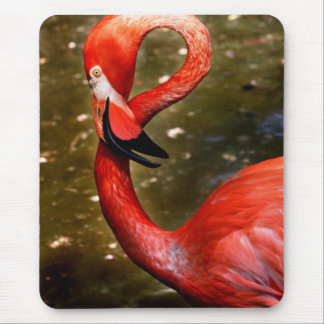 Flamingo head curved down mouse pad