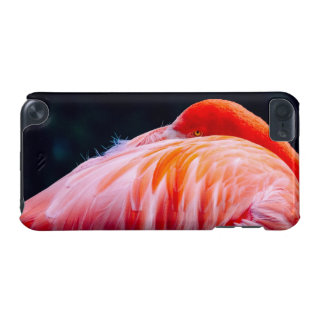 Flamingo In Feathers iPod Touch 5G Cases