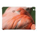 Flamingo iPad Mini Case
