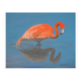 Flamingo items postcard