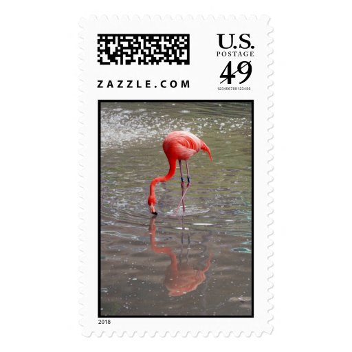 Flamingo Kiss Postage Stamp