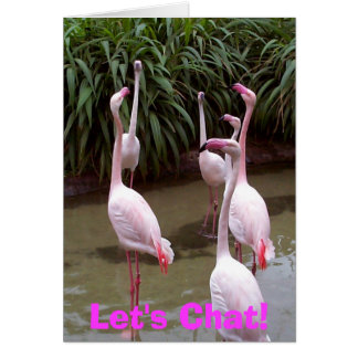 Flamingo Let's Chat Greeting Card