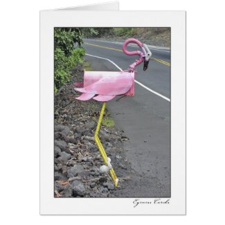 Flamingo Mailbox card