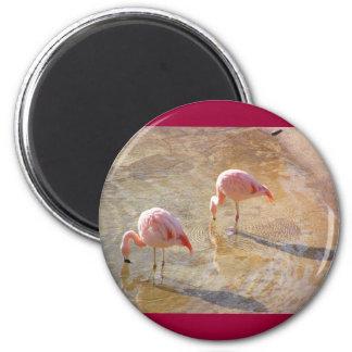 Flamingo Morning Refrigerator Magnet