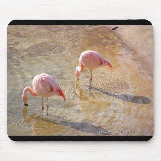 Flamingo Morning Mouse Pad