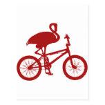 Flamingo on Bicycle Silhouette Postcard