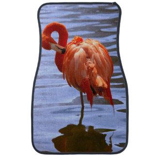 Flamingo on one leg in water car floor mat