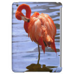 Flamingo on one leg in water iPad air case