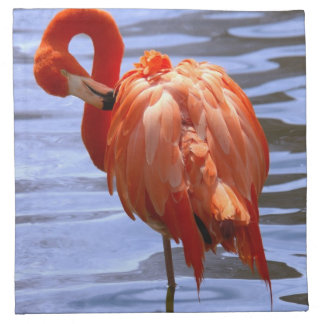 Flamingo on one leg in water napkins