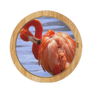 Flamingo on one leg in water round cheese board