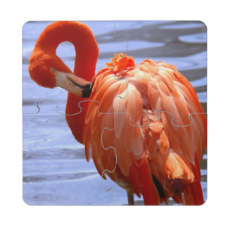 Flamingo on one leg in water puzzle coaster