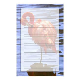 Flamingo on one leg in water stationery
