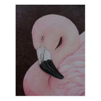 Flamingo Original Bird Art Postcard
