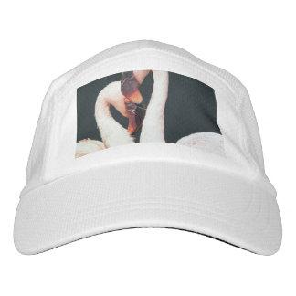 flamingo, pair, tenderness, zoo, love, romantic, b hat
