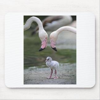 Flamingo Parenthood Mouse Pad