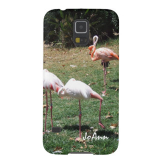 Flamingo Photograph Samsung Galaxy S5 Case