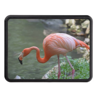 Flamingo Hitch Cover