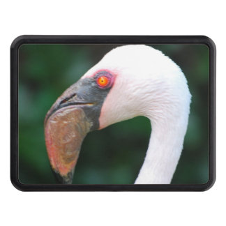 Flamingo Tow Hitch Covers
