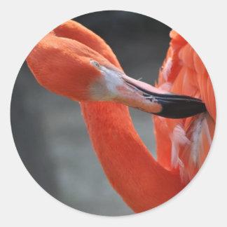 Flamingo - round Sticker