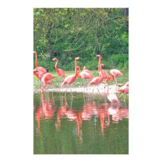 Flamingo Row at Lake in Spring,Birds Pink Wildlife Stationery
