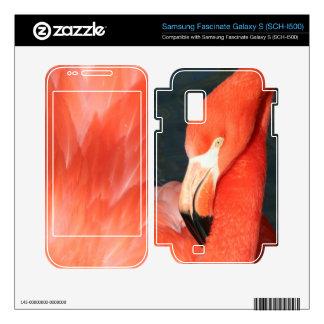 Flamingo Samsung Fascinate Galaxy SCH-I500 Skin Samsung Fascinate Decal