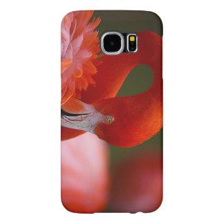 Flamingo Samsung Galaxy S6 Cases