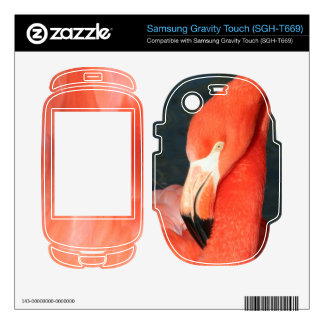 Flamingo Samsung Gravity Touch SGH-T669 Skin Samsung Gravity Touch Skin
