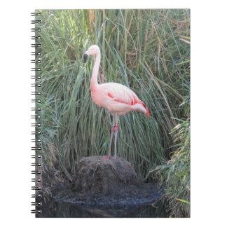 Flamingo Spiral Notebook