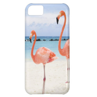 Flamingo Stroll Cover For iPhone 5C