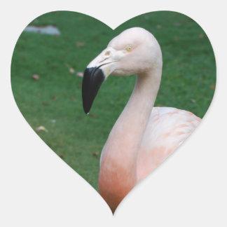 Flamingo Stroll Stickers